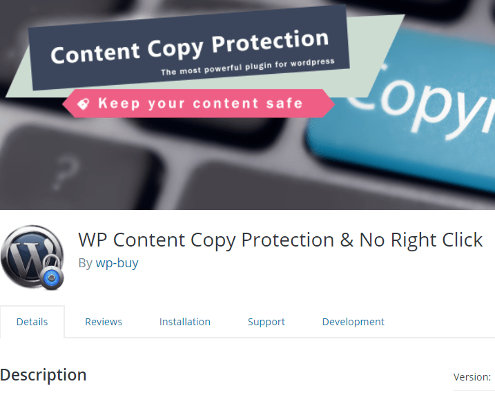 WordPress Plugin to protect your content from being copied